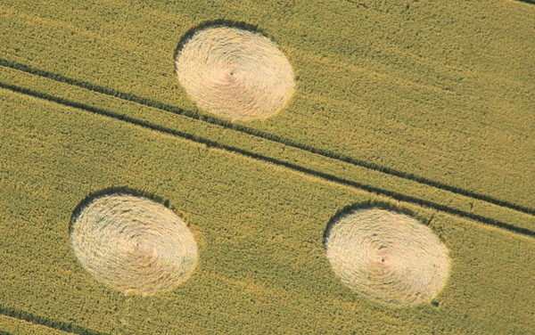 "Crop circles ""with a signature"" !"