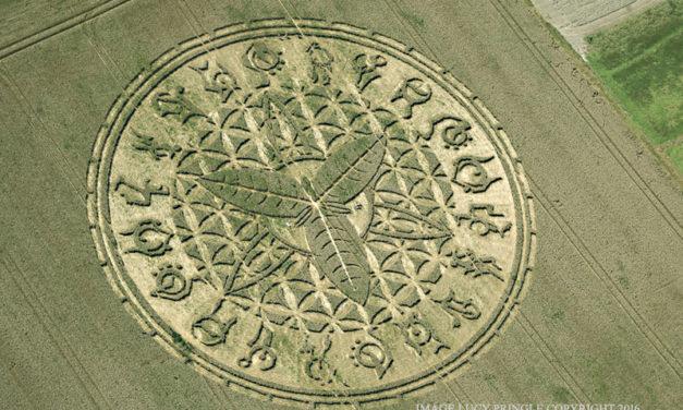 Crop circles: an exceptional achievement … of human origin!